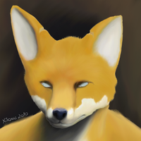 Nickale the Fox 2 by xsonic