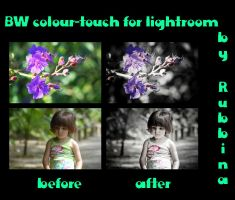 BW Colour Touch for Lightroom by rubbina