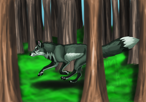 Request- Forest run by Narncolie