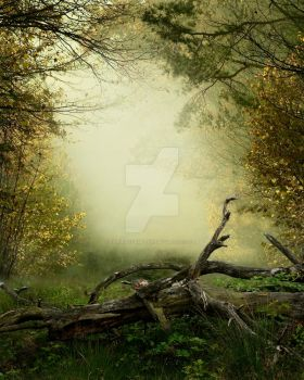 Premade Background FGM 222 by FairieGoodMother