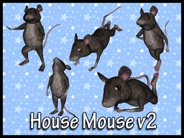 House Mouse v2 by Stock-by-Dana