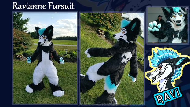 Ravianne Fursuit by Shadow-Crystol