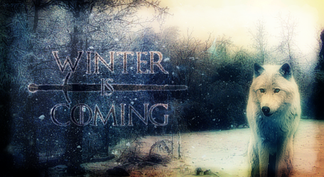Winter Is Coming by Anavrin96