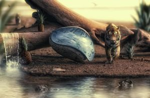 In time he wil cross the water by Glympus