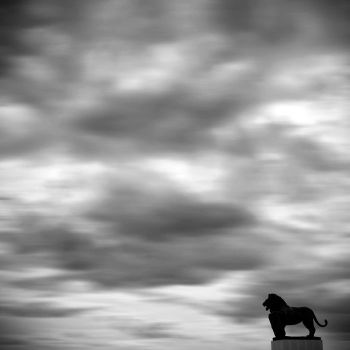 Lion and Clouds by anjelicek