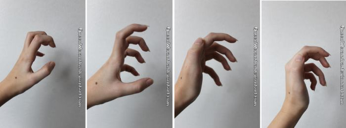 Clawed hand side reference stock by QueenWerandra