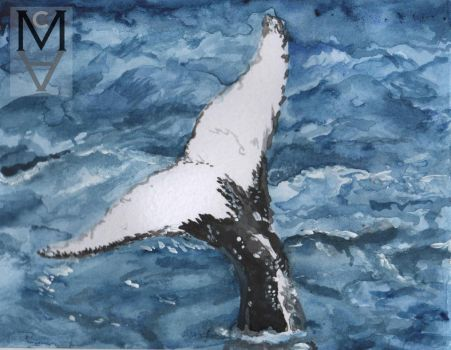Whale Tail by sarah-mca-art