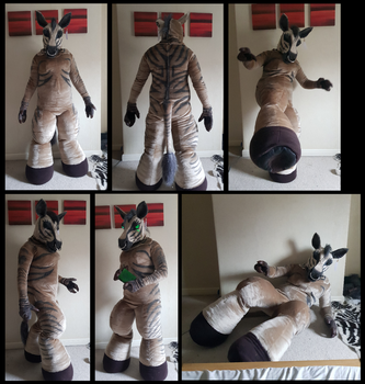 Aoife Zebra Fursuit by CuriousCreatures