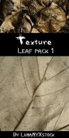 Leaf texture - pack 01 by LunaNYXstock