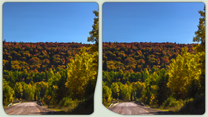 Autumn leafes of Route 129 in 3-D / CrossView by zour