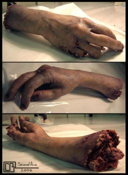 Severed Arm by CB-FX