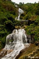 Silver Waterfall by songster69