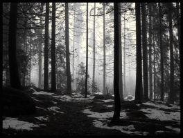 Walk into nothing by LacrimaArgenteus