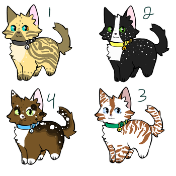 50 point cat adopts #3 (CLOSED) by MausyAdopts