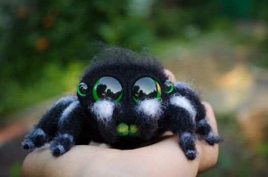 Cute Spider Needle Felted Phidippus regius Black by Lyntoys