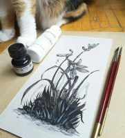 Inktober 2016 Day 5-6 (with a cat) by MirielVinya