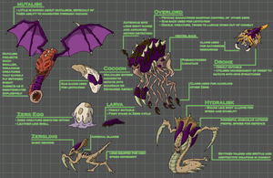 Zerg Fact Sheet by Morgoth883