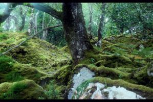 Moss by fae-photography