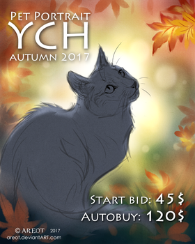 Your Cat Here | Pet portrait auction | OPEN by areot
