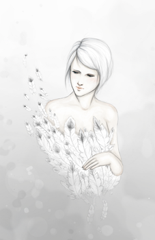 Feather by rinoni