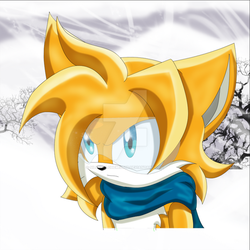 Tails  2 years later - Sonic Forget the past by SilverAlchemist09