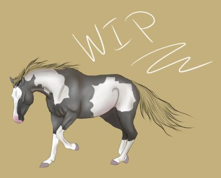 New Program Test by VIP-EquineArt