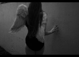 Wings of Desire_2 by diamondsTwinkle18