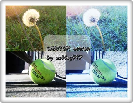 Winter action download by ashley717