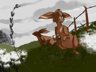 Watership Down by br3nna