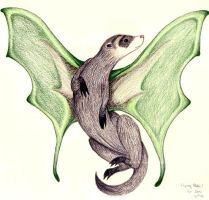 Winged Ferret by eringomez