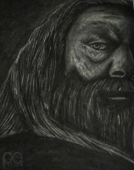 Dumbledore by Passion91