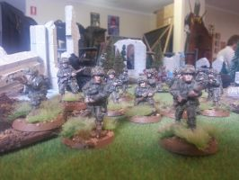 101st Airborne Company by docwinter