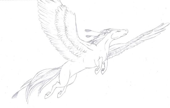 Pegasus- Sketch by Shameless-Sacrifice