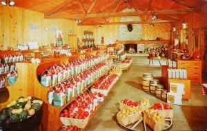Vintage Shopping - The Apple House by Yesterdays-Paper