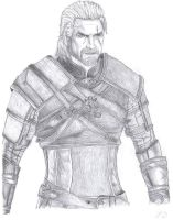 Geralt by Paryks