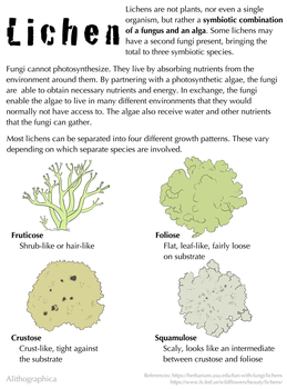 Science Fact Friday: Lichen by Alithographica