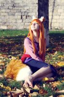 Cosplay Horo by TophRayne