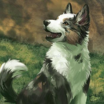 Bork - SpeedPaint by GoldenDruid