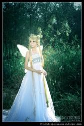 Princess Serenity:: by ILoveChina