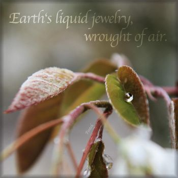 Earth's liquid jewelry. Wrought of air. by Penni2