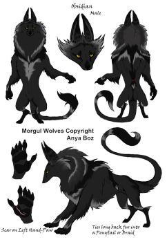 Morgul Wolf Design Contest: Obsidian by Ice-cold-Werewolf