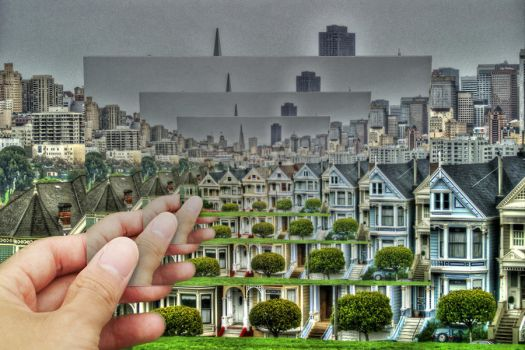 Nob Hill - Picture in a Picture 4X by nomisdice