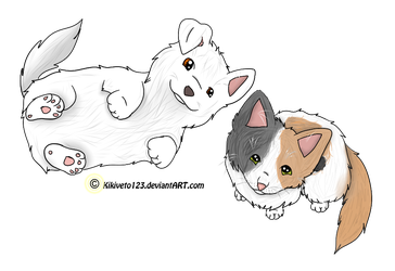 BFF- Like Cat and Dog by iVixey