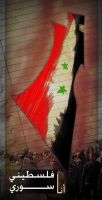 I'm a Palestinian Syrian by sameer-kH