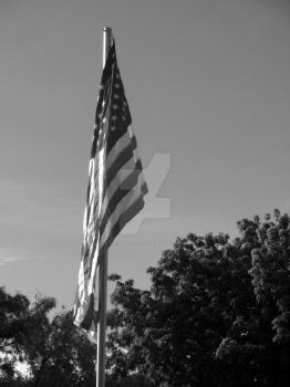 Black and white flag by JacobMcClure