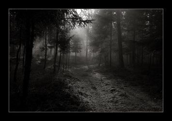 The Dark Way 1 by AtXU