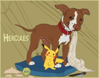 Flash Portraits - Herc The Hercules + Video!! by GoPuppy