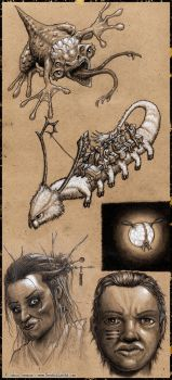 Talifar Creatures and Denizens by Scrybe