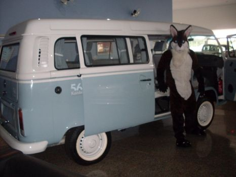 VW T2 Last edition by jlfurry