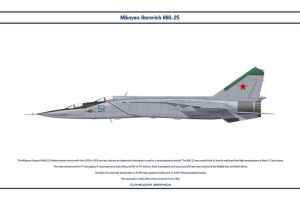 MiG-25 USSR 2 by WS-Clave